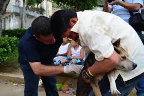Photo of Autoridades sanitarias de Yopal recomiendan evitar contagio con rabia e instó ante posibles casos acudir al médico en forma inmediata