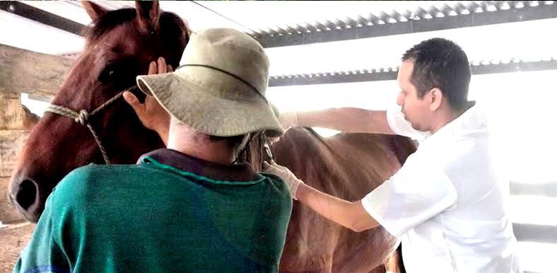 Photo of Secretarías de Salud y Desarrollo Económico de Yopal, articulados para mitigar efectos EEE