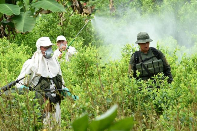 Photo of Aprueban fumigación manual con glifosato en Colombia