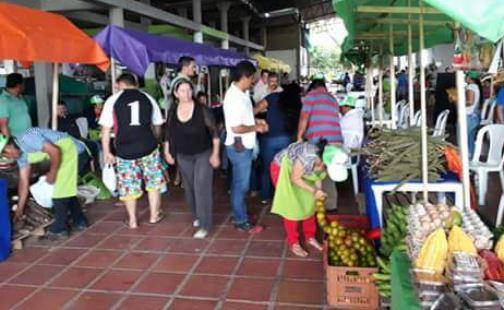 Photo of Mercados Campesinos, una ventana hacia el fortalecimiento de la comercialización de productores de Aguazul