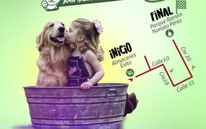 Primera campaña de donación de alimentos e insumos para mascotas este sábado 10 de febrero