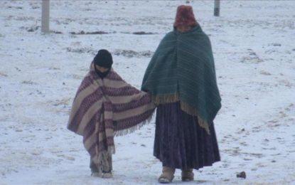 Perú declara emergencia en once departamentos por heladas y nevadas