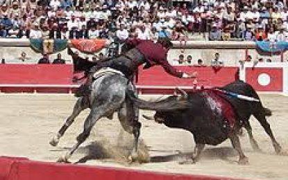 Toro persiguió a varios espectadores y mató un caballo al escapar de la Plaza Dimas Avella de Aguazul