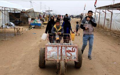 ONU: 5,5 millones de menores de edad, víctimas de trabajo forzado