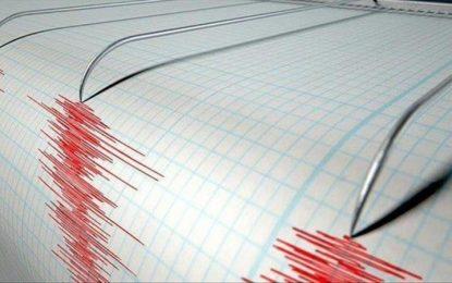 Casi 300 viviendas afectadas por terremoto en Chile