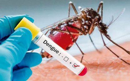 Recomendaciones para prevenir el dengue, En Yopal