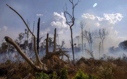 La ONU estudia posible cumbre extraodinaria sobre la Amazonía