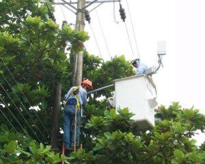 Enerca anuncia suspensión del servicio de energía en sectores del municipio de Nunchía, para este miércoles 15 de julio