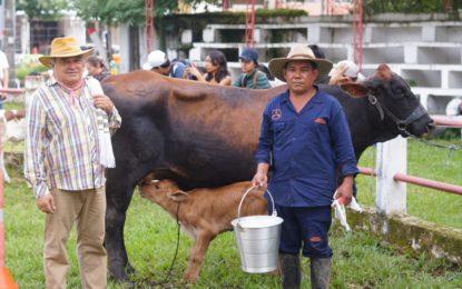 Comunidad yopaleña participó en la XV Feria Ganadera