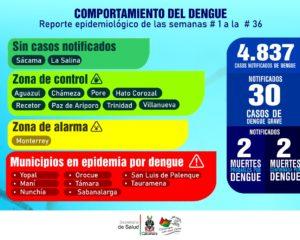 Casanare arroja 4.837 casos en 2019 de dengue