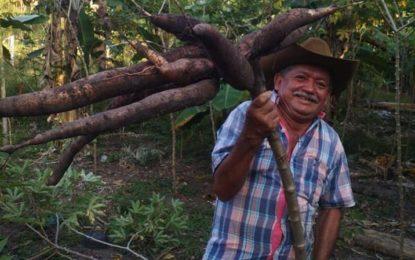 Monterrey está de luto por la muerte 'cachiporro'