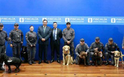 Fiscalía jubiló a 7 perros