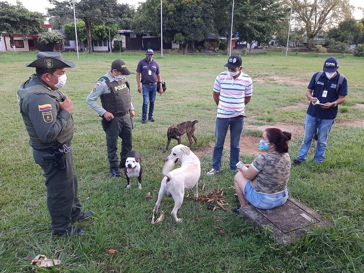 Photo of Administración municipal lideró campaña de sensibilización sobre tenencia responsable de mascotas