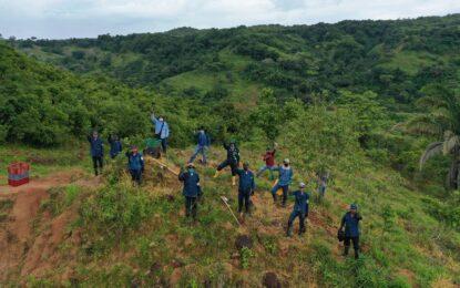 Ecopetrol retoma actividades de reforestación en Casanare
