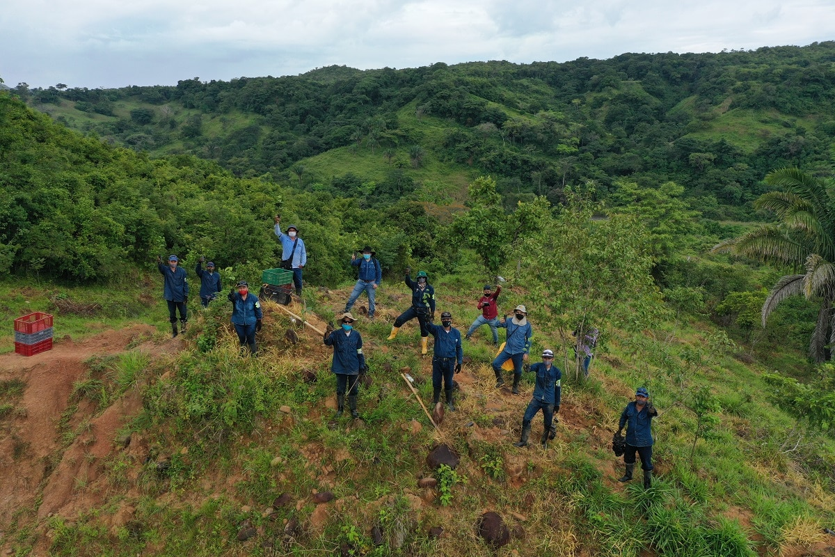 Photo of Ecopetrol retoma actividades de reforestación en Casanare