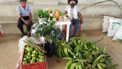 Photo of Administración departamental continúa apoyando mercados campesinos
