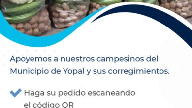 Photo of Mercados Virtuales Campesinos: nueva estrategia para la reactivación económica de la ciudad