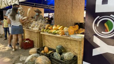 Photo of Con éxito, se llevó a acabo el mercado campesino en el parque La Iguana