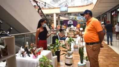 Photo of Con éxito culminó la 'Feria Naturaleza Creativa', realizada el pasado fin de semana