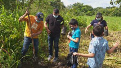 Photo of Nueva jornada de siembra de árboles se llevó a cabo en el parque La Iguana, esta vez líderada por la Secretaría de Educación
