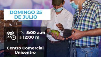 Photo of 'Mercado Campesino' hará parte este fin de semana, de la 'Feria de la llaneridad'