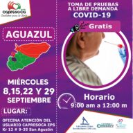 Este 08, 15, 22 y 29 de septiembre, habrá toma de pruebas covid19 gratis en Aguazul - Noticias de Colombia